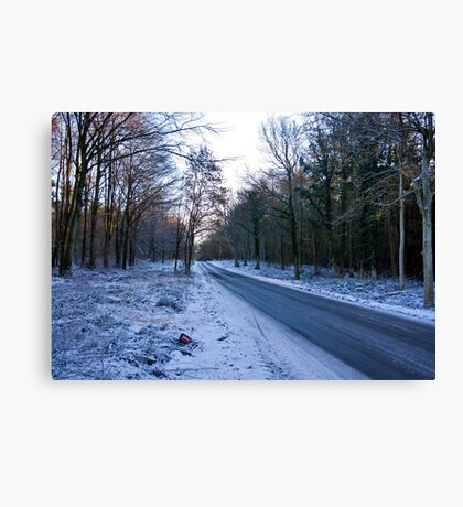 Road Through The Woods Canvas Print