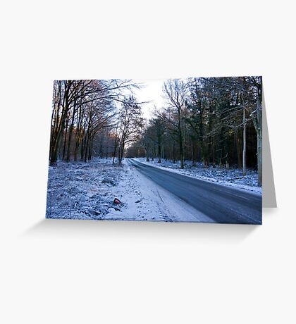 Road Through The Woods Greeting Card
