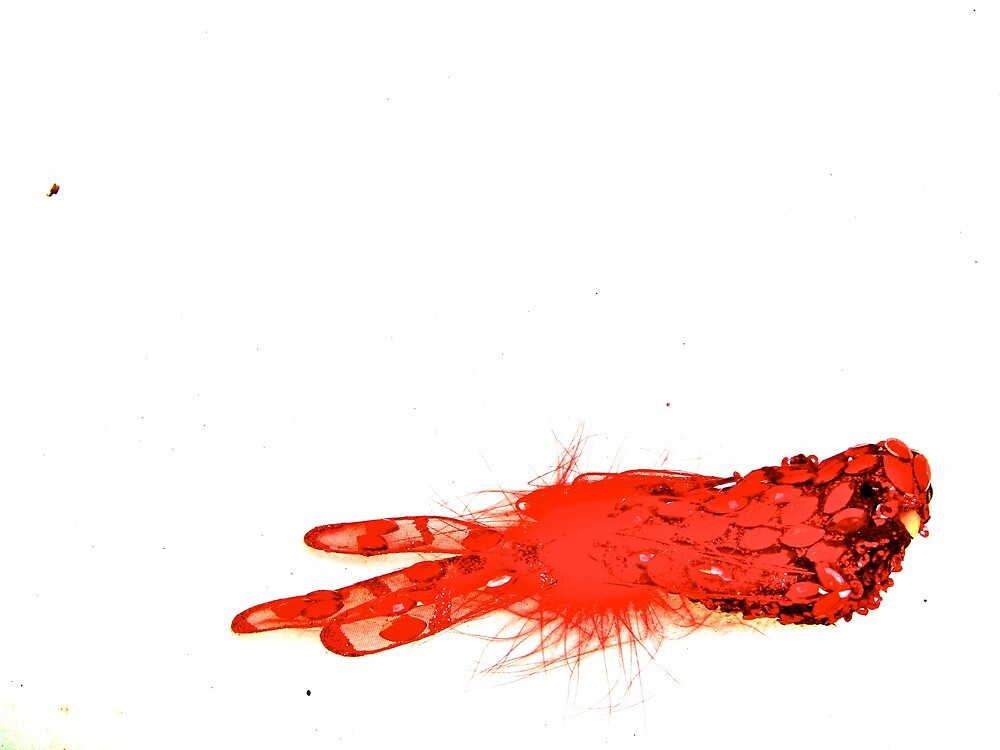 red bird by cesca
