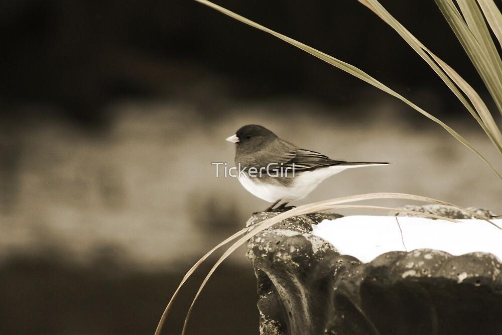 Winter Guest by TickerGirl
