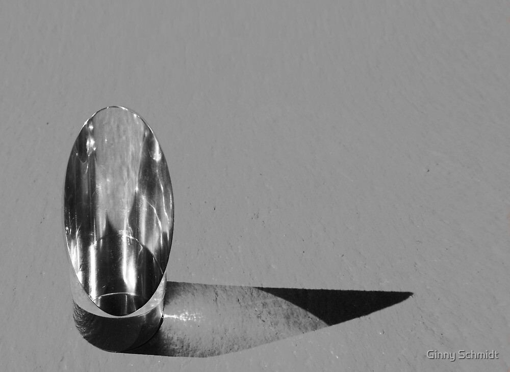 Prism in shades of gray by Ginny Schmidt
