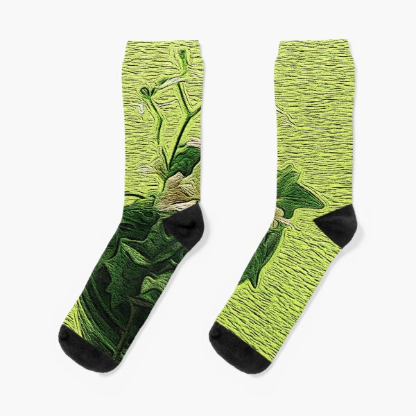 A Cup of Green Socks