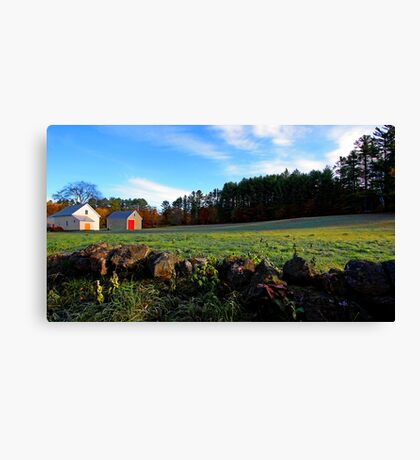 Lovell Farm - Brightly-Colored Barn Doors Canvas Print