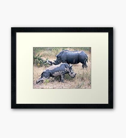 If You Got An Itch..... Framed Print