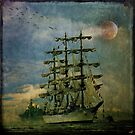 Tall Ship, New York Harbor, 1976 by Chris Lord