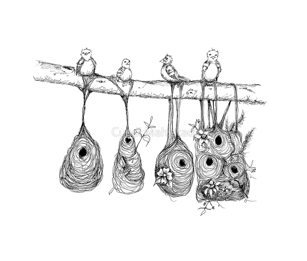 Oriole Nests - No place like home (white) by Cyndi Mahlstadt