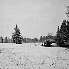 Very Cold Morning by Benjamin Sloma