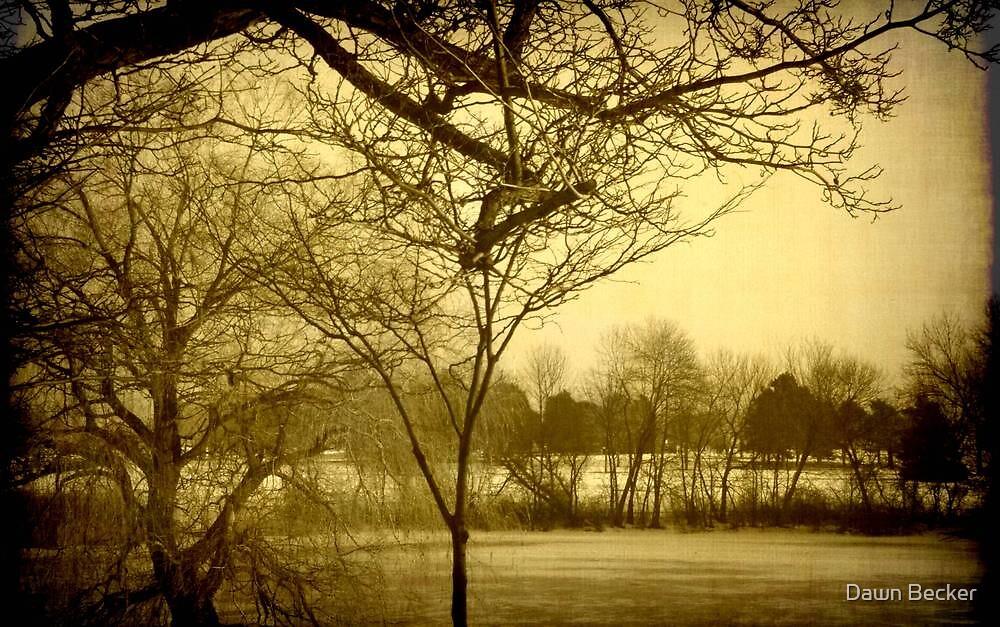 Frozen Lagoon © by Dawn Becker