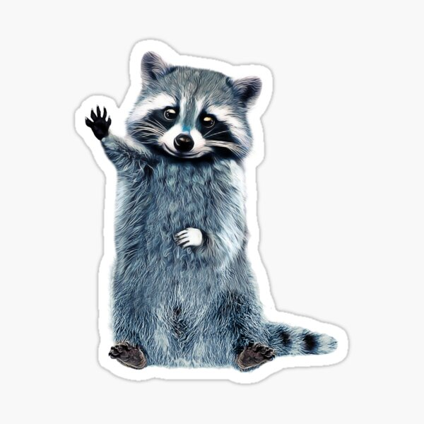 Raccoon Cute Girls Raccoon Shirt, Ladies Raccoon Shirt Trash Panda Sticker