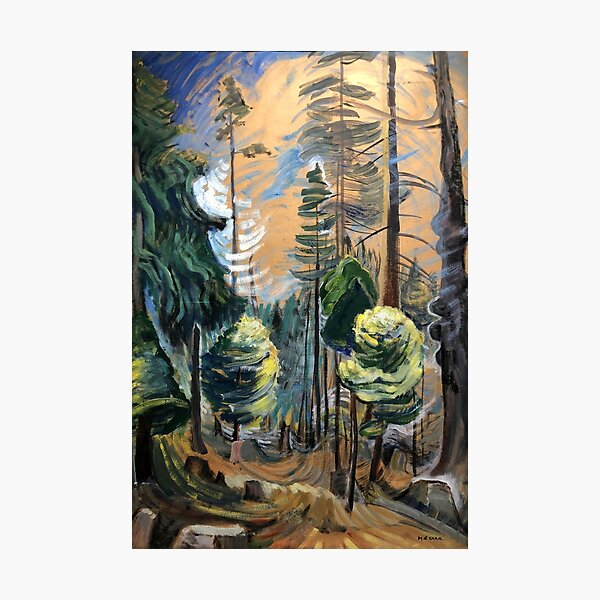 Emily Carr - Old Forest Photographic Print