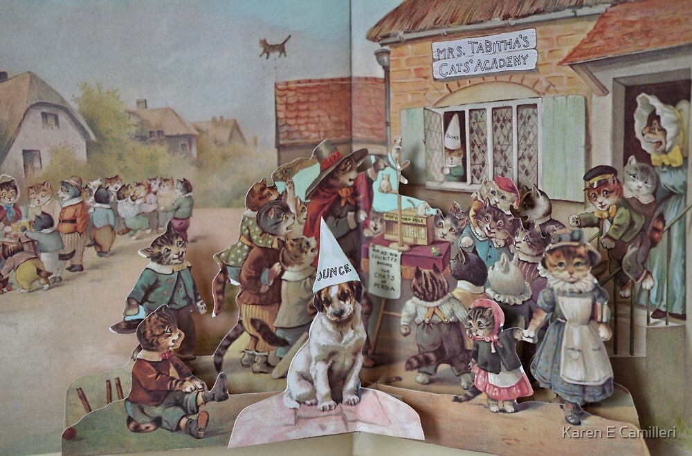 The Children's Picture Book by Karen E Camilleri