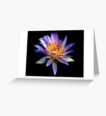 Luminous Blue Water Lily Greeting Card