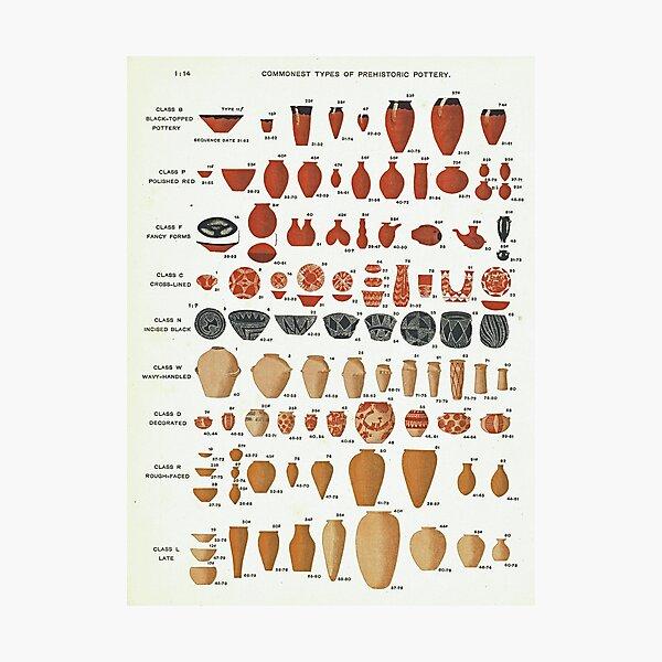 Petrie's Pottery Seriation Photographic Print