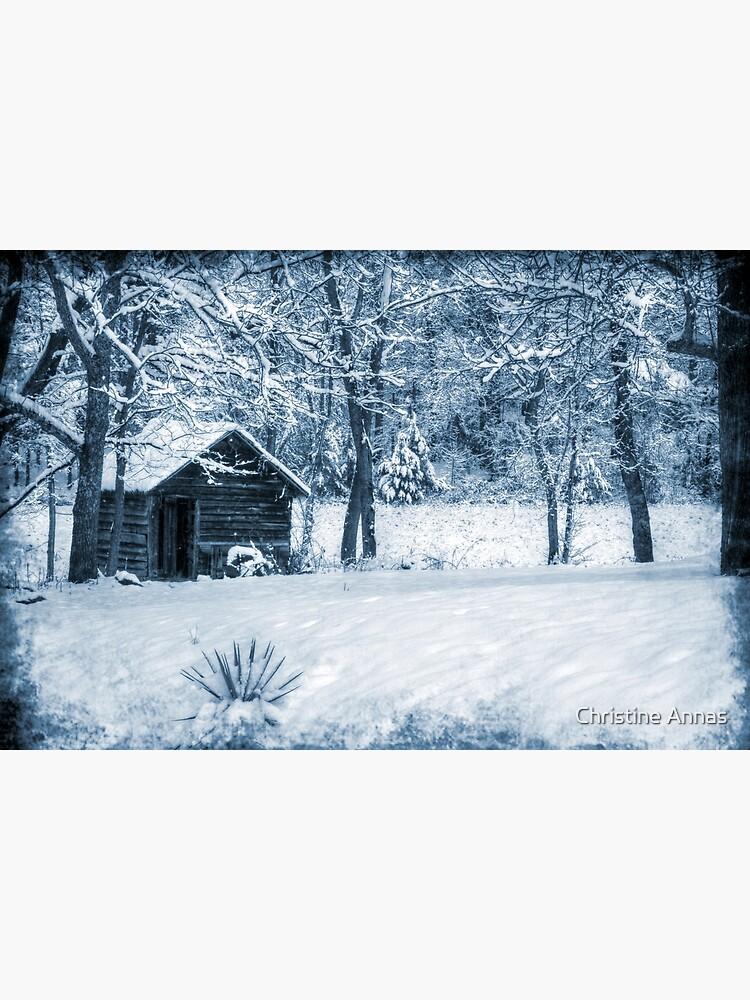Blue Christmas by 2Bricks
