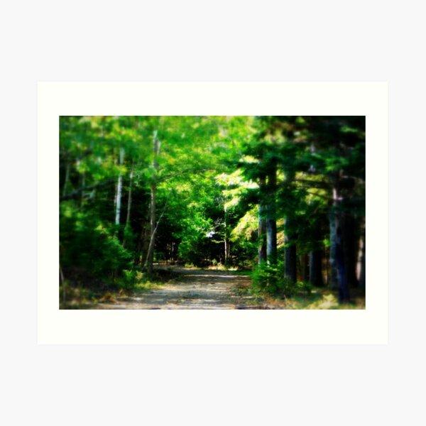 The road to the treasure Art Print