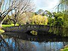 Botanical Gardens in Warrnambool by Kayleigh Walmsley