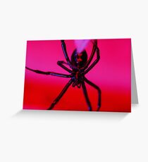 black widow against red background Greeting Card