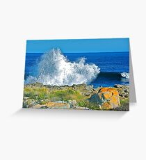 Ocean Bunny Greeting Card
