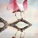 Mirror, Mirror ---- by Brian Tarr