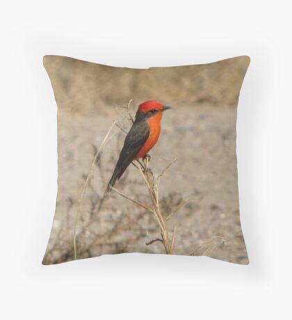 Vermilion Flycatcher ~ Male Throw Pillow