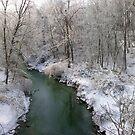 Winter Creek by LizzieMorrison