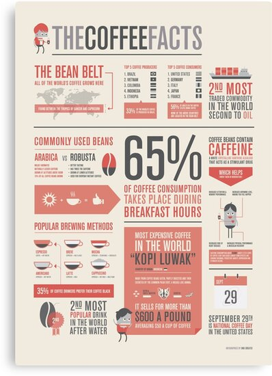 the coffee facts infographic poster canvas prints by onocreates