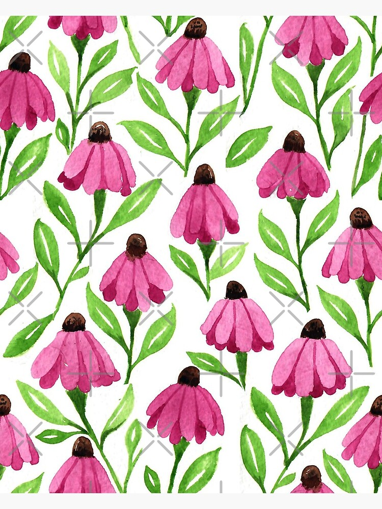 Pink Cone Flowers by creativinchi