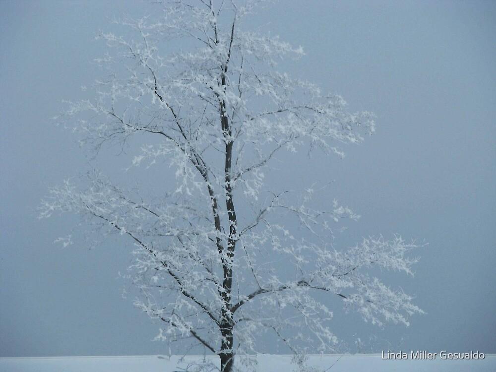 Branches by Linda Miller Gesualdo