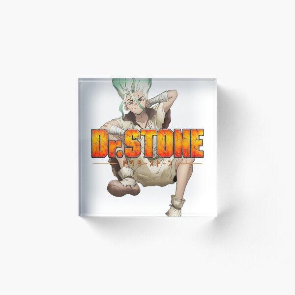Dr. Stone anime/manga design with Senku  Acrylic Block