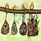 Oriole Nests - No place like home (Rainbow) by Cyndi Mahlstadt