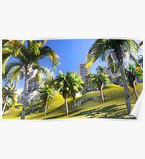 Hawaiian paradise Poster