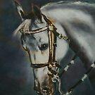 Arabian Head Study by Kathleen Livingston