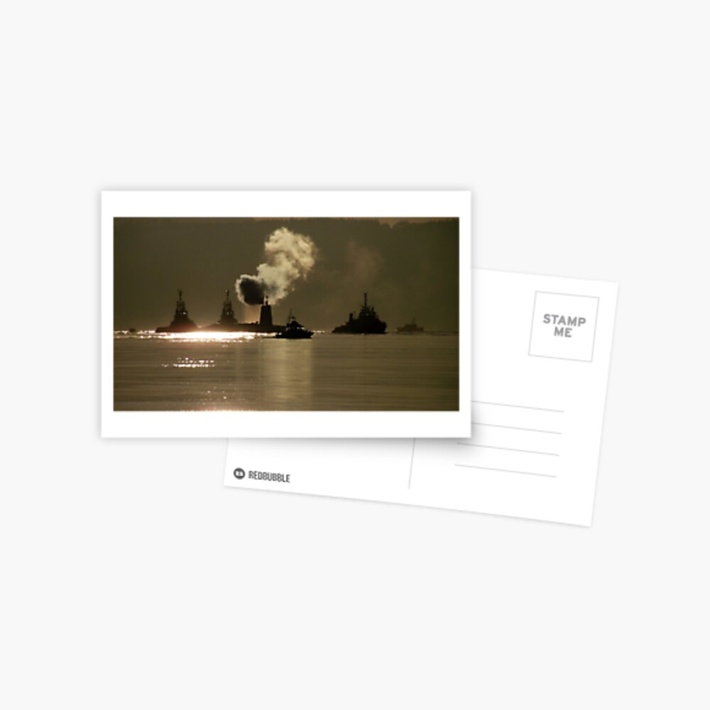 HMS Vanguard Postcard