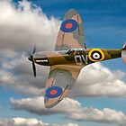 Salute to the Few by Colin Smedley