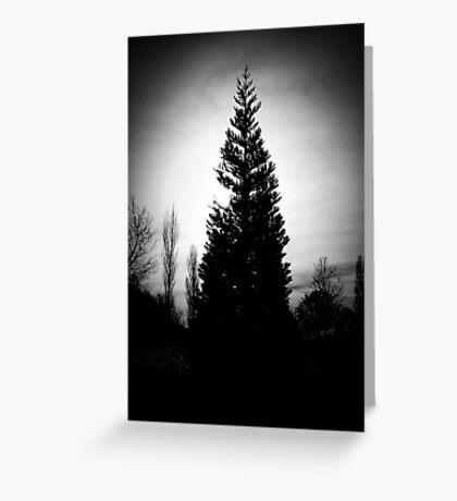Winter Vignette Greeting Card