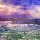 Roar of the Sea ©  by Dawn Becker