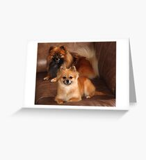 Astro and Karma Greeting Card