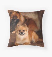 Astro and Karma Throw Pillow