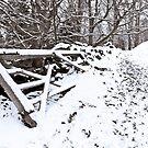 Fence in the Snow by Nando MacHado