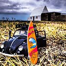 Surf bug by jerseygallery