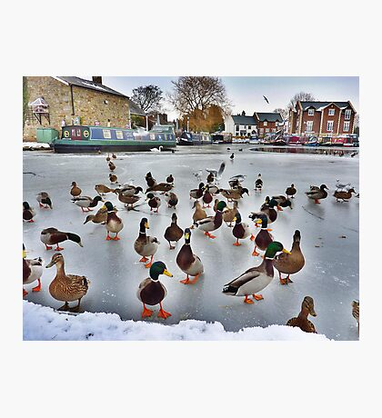The Frozen Garstang Basin . Photographic Print