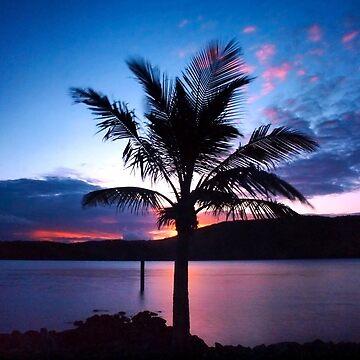 Palm Tree by BecBrace