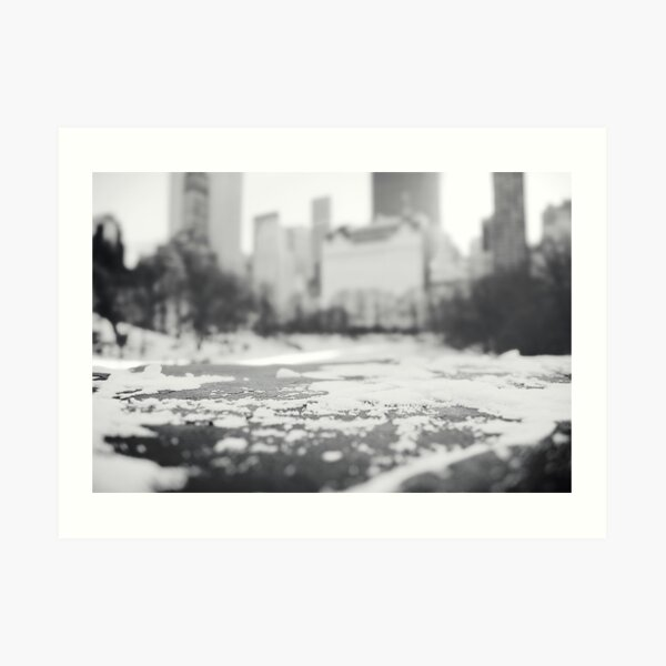 Snow in Central Park Art Print