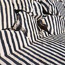 Zebra Rocks by AJM Photography