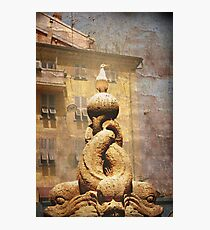 fish market jendarme Photographic Print
