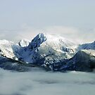 Mountians Clearing by Rodney55