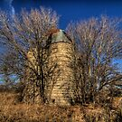The Defunct Iredell Granary by Terence Russell