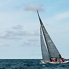 Sailing Panorama by wolftinz