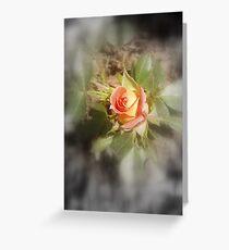 peach yellow two tone rosebud Greeting Card