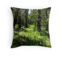 """""""Rising from the Ashes"""" - Brisbane Ranges Throw Pillow"""